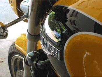 Thunderbird Sport Fuel Tank