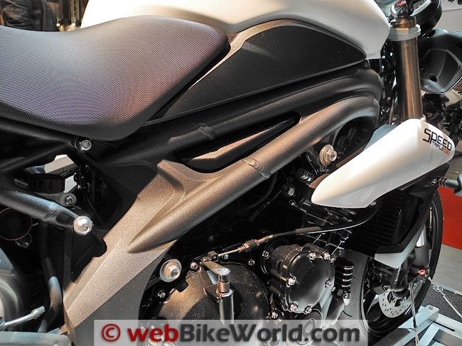 2011 Triumph Speed Triple - Frame