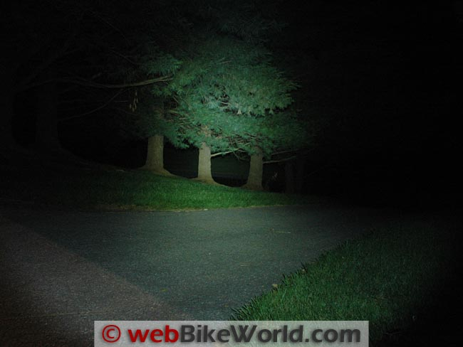 Clearwater 800 Lumen Flashlight on Trees