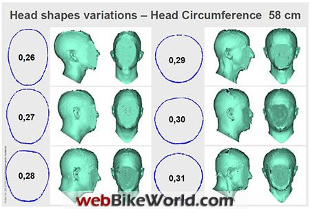 Head Shape Variations