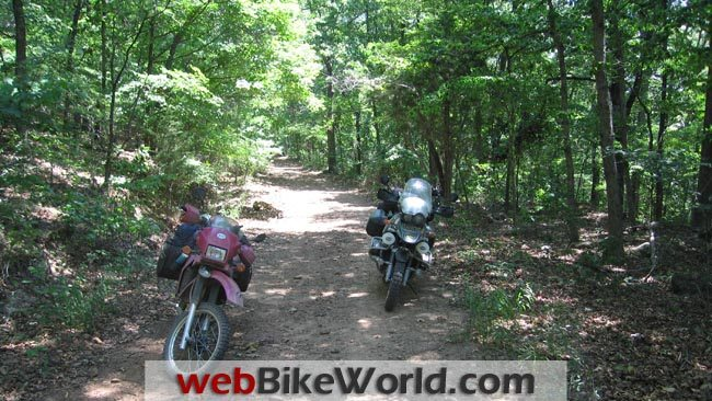 In the Woods on the Trans-America Trail