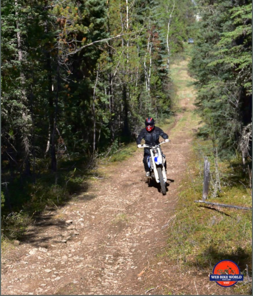 Forest Terrain with Bike for Testing Rukka ROR