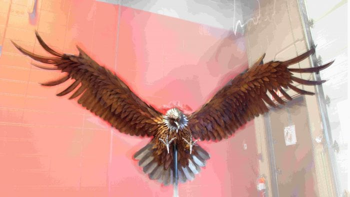 Steel sculpture of an eagle.