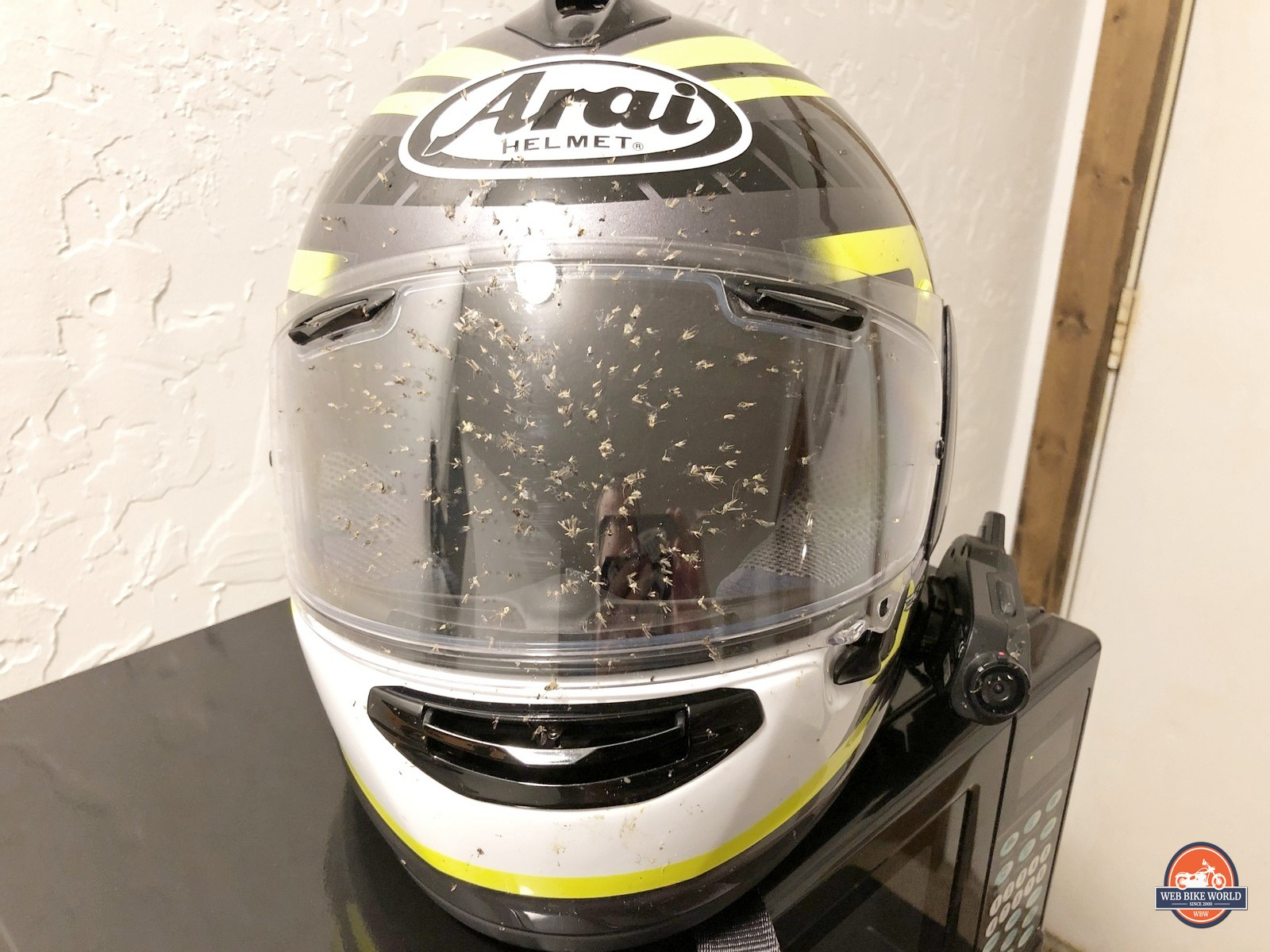 My bug-covered helmet after riding from Rigby to Challis, Idaho.