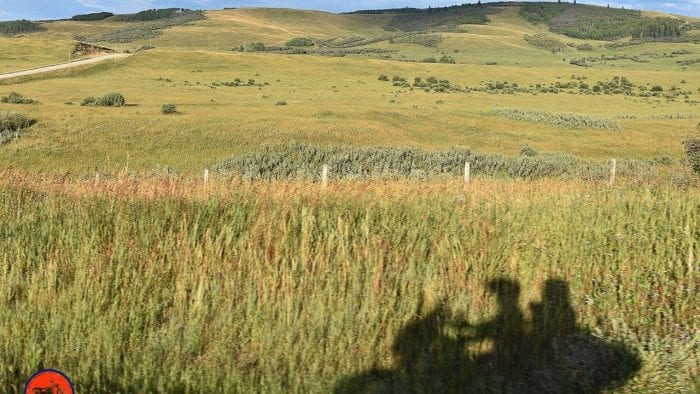 The shadow of a motorcycle with riders on the grass near Longview, Alberta.