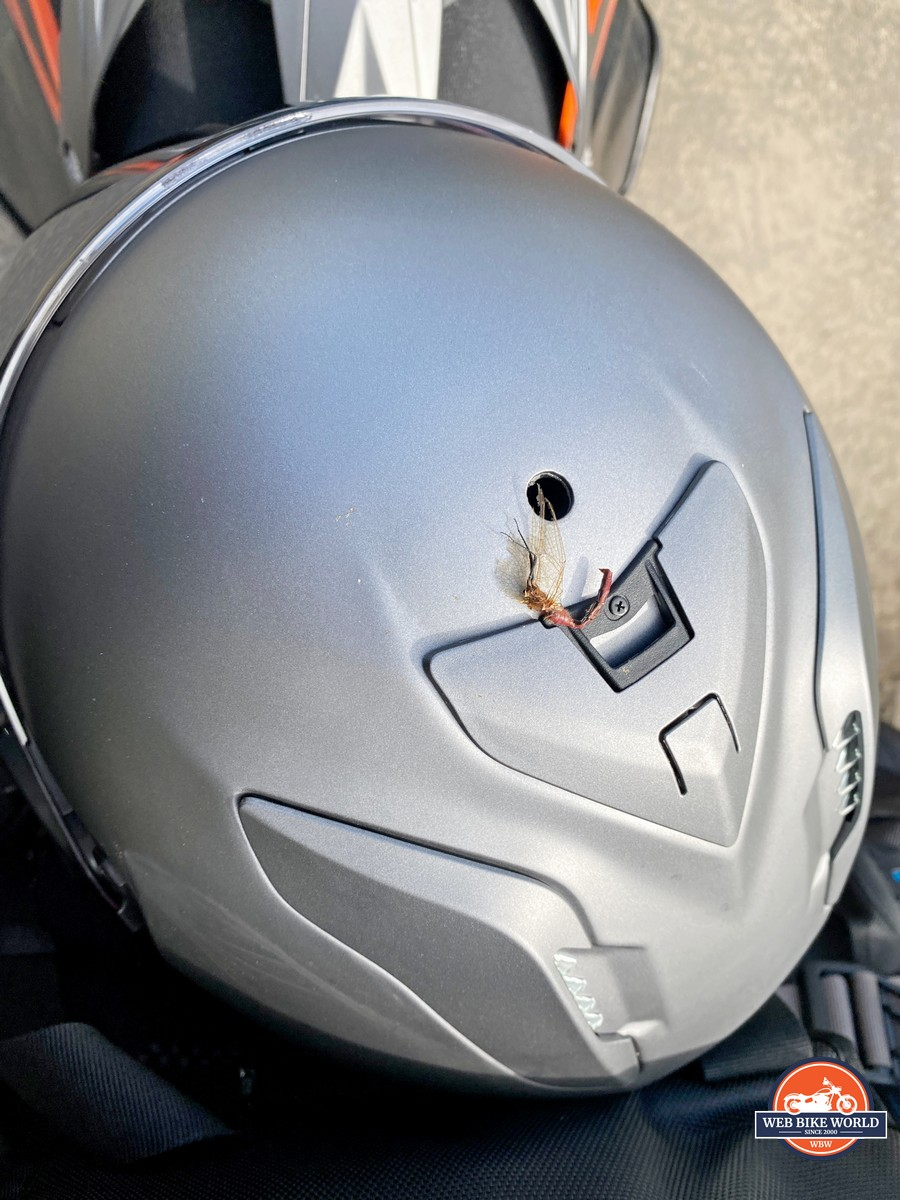Top view of Shoei Hornet X2 with insect carcass stuck in the upper vent.