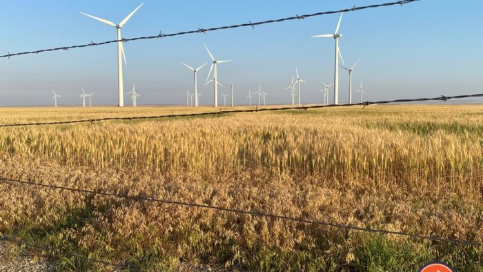 A field of windmills somewhere in Montana.